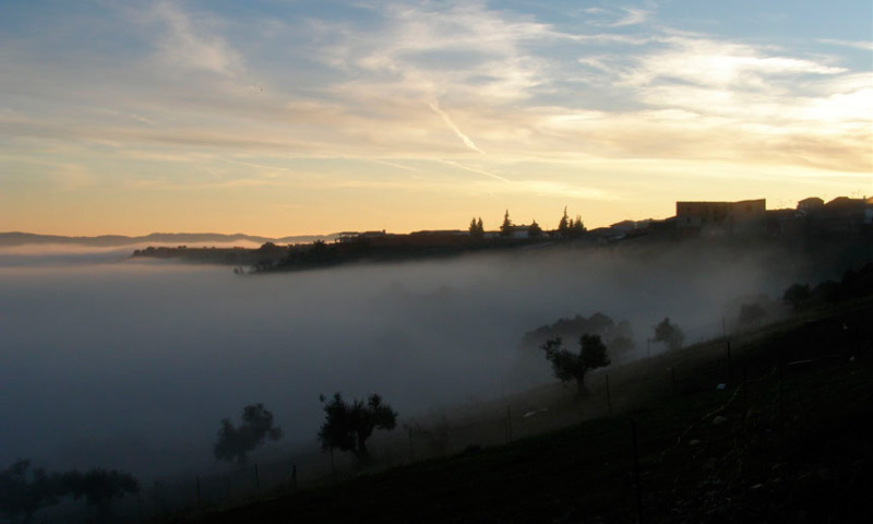 Castillo niebla